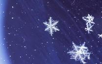 雪花图片壁纸-雪花图片大全