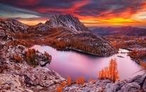 秋季枫叶梦境意境背景图片壁纸