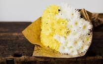 唯美小清爽花束高清图片壁纸