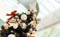 美丽的圣诞树图片壁纸大全