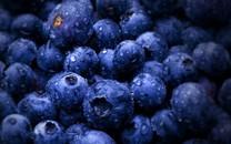 蓝莓图片-蓝莓壁纸图片大全