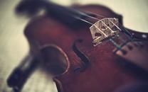 小提琴图片-唯美小提琴图片壁纸