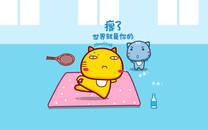 哈咪猫减肥励志桌面壁纸