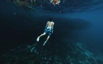 海底世界唯美高清图片壁纸