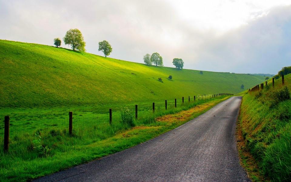 电脑壁纸 自然风景壁纸 绿色护眼壁纸宽屏图片下载  壁纸下载: 1920x