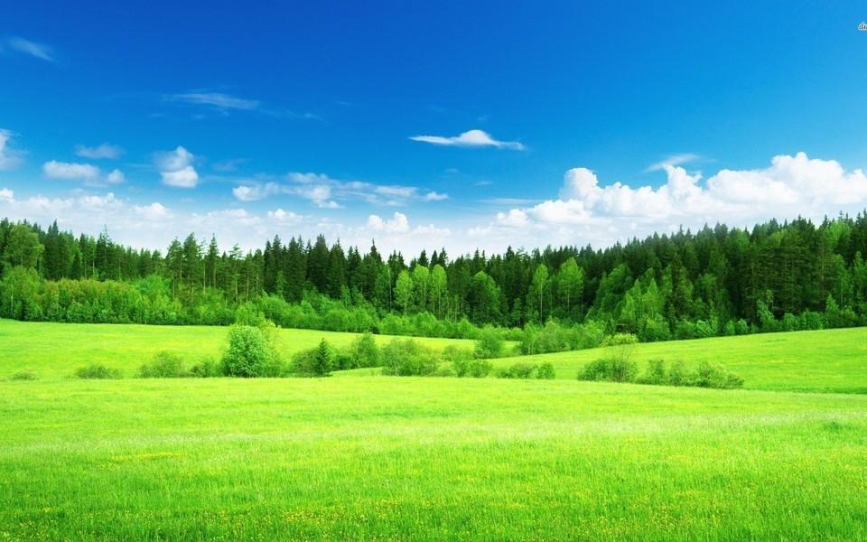 笔记本壁纸 自然风景壁纸 绿色护眼主题高清壁纸下载   壁纸下载: 上