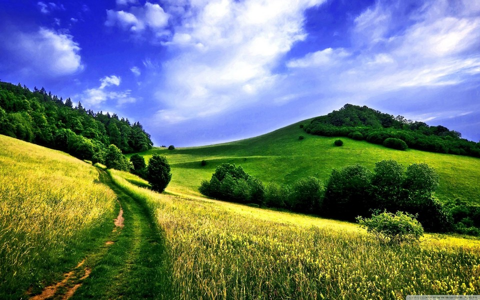 电脑壁纸 自然风景壁纸 风景壁纸高清桌面下载下载