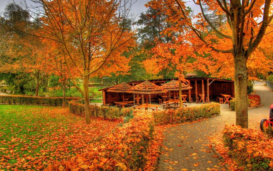 笔记本壁纸 自然风景壁纸 秋天自然景色壁纸图片下载