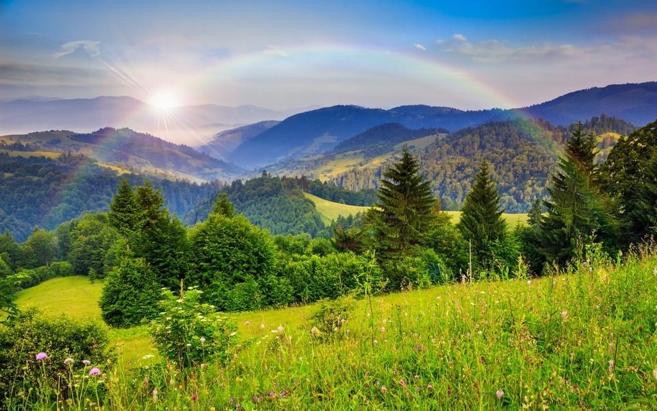 笔记本壁纸 自然风景壁纸 绿色自然护眼壁纸下载