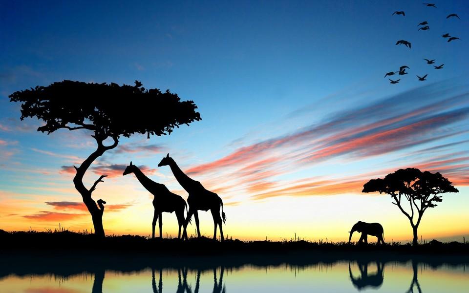 电脑壁纸 自然风景壁纸 非洲自然景色壁纸图集下载