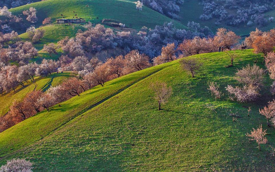 ipad壁纸 自然风景壁纸 2016年bing高空俯视风景ipad壁纸下载