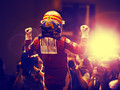 F1车手阿隆索壁纸