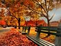 公园美景风光超大壁纸