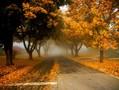 秋天壁纸图片大全