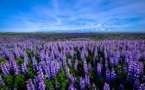 超级高清自然风景图片壁纸