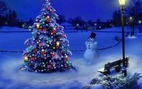 圣诞树图片壁纸-圣诞树图片大全