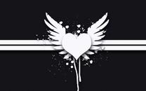 翅膀图片-翅膀高清图片大全