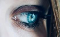 眼睛特写图片壁纸