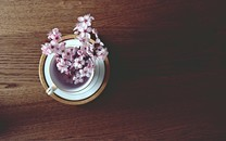 清新小花摆设高清图片壁纸