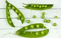 蔬菜创意图片背景壁纸