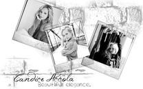 坎迪丝・阿科拉(Candice Accola)美女壁纸