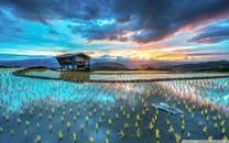 國家航天局:中國正規劃建設國際月球科研站