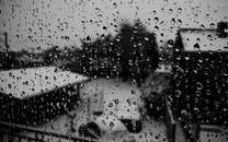 雨滴图片-雨滴图片壁纸大全