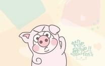 小恭猪萌友团桌面壁纸