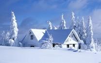 想和你一起去看雪啊