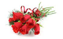 妖艳红玫瑰壁纸-红玫瑰图片壁纸大全