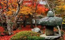 庭院风景壁纸-庭院风景图片大全