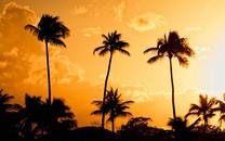 夕阳中的风景图片壁纸大全