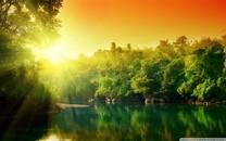 自然的绿色美景电脑壁纸图集