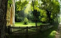 纯洁的自然美景图片壁纸大全