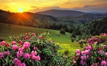 清晨美景壁纸-清晨美景壁纸大全