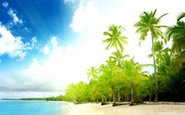 自然海景清新壁纸