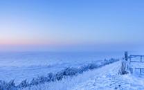 冰天雪地唯美意境壁纸桌面