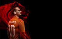 2014世界杯荷兰队壁纸