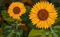 精美花卉设计宽屏壁纸