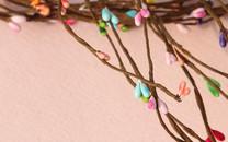 浆果和花朵暖色桌面壁纸