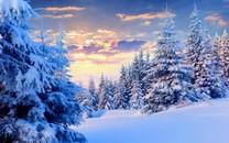 冬季唯美的雪SNOW壁纸下载