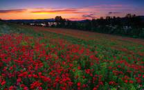 日落风景桌面图集下载