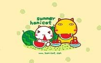 哈咪猫和夏天有个约会
