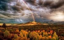 唯美意境大自然秋天的树叶图片壁纸