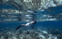 海底潜水高清图片壁纸
