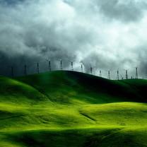 保护眼睛绿色风景高清壁纸