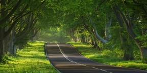 绝美道路风光图片壁纸2