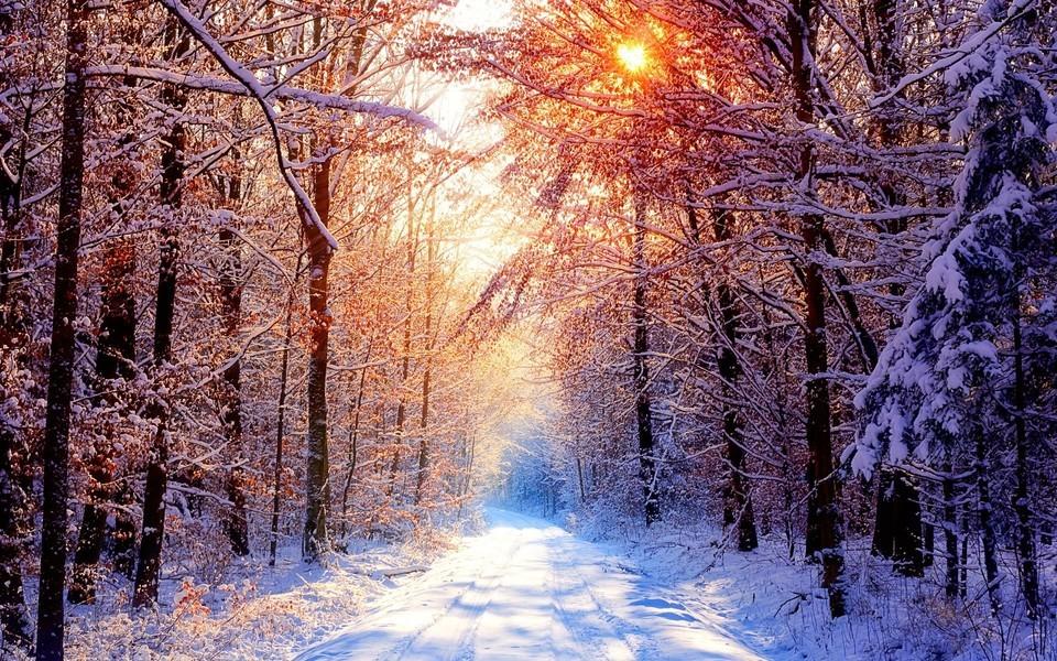 美麗的冬季風光雪景壁紙