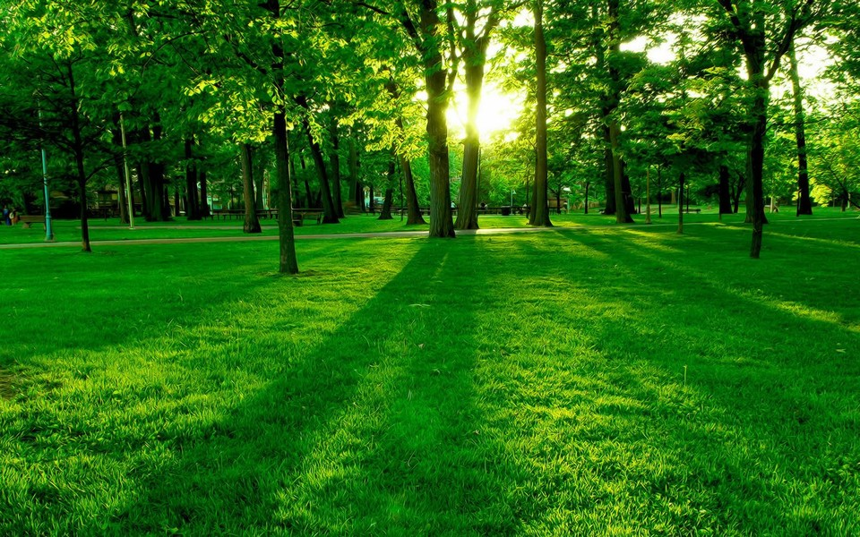 大自然奇特风景图片-大自然奇特风景图片大全
