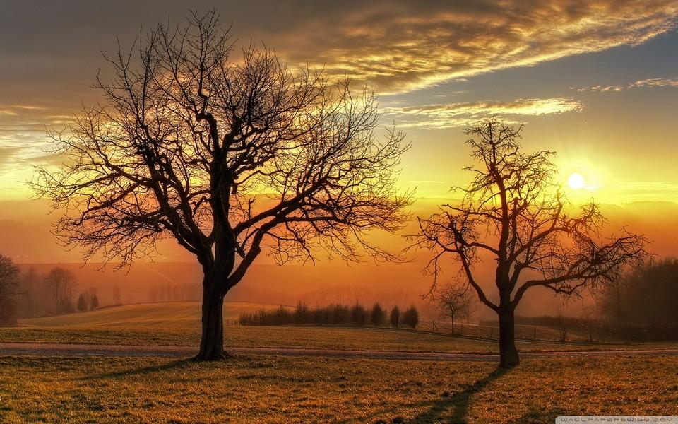 人有優點,神看分明;打柴送貧,也能成神(數文)